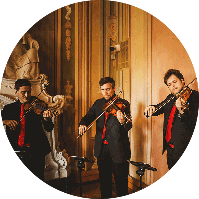 The Wedding String Quartet creates a rich yet versatile sound at a wedding ceremony in the Registry hall in Ljubljana.
